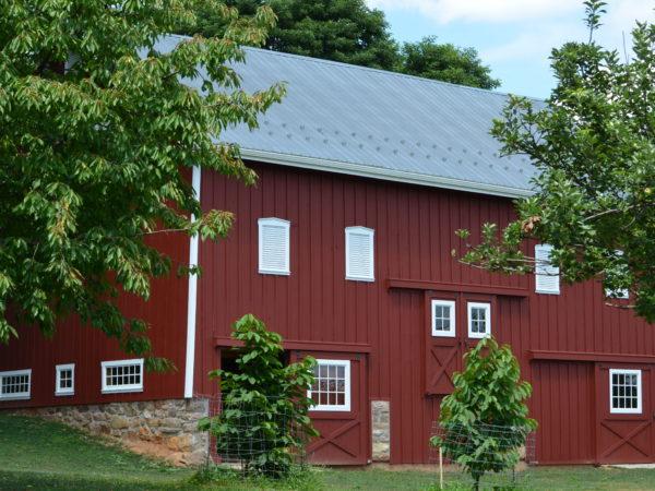Building - Old Barn Restoration